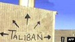 Taliban Amerikanın başçılığı ilə Əfqanıstanın işğalını Qərb demokratiyasının üzündə daimi bir damğa olduğunu bildirib