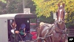 阿米什人驾驶马车在路上行走