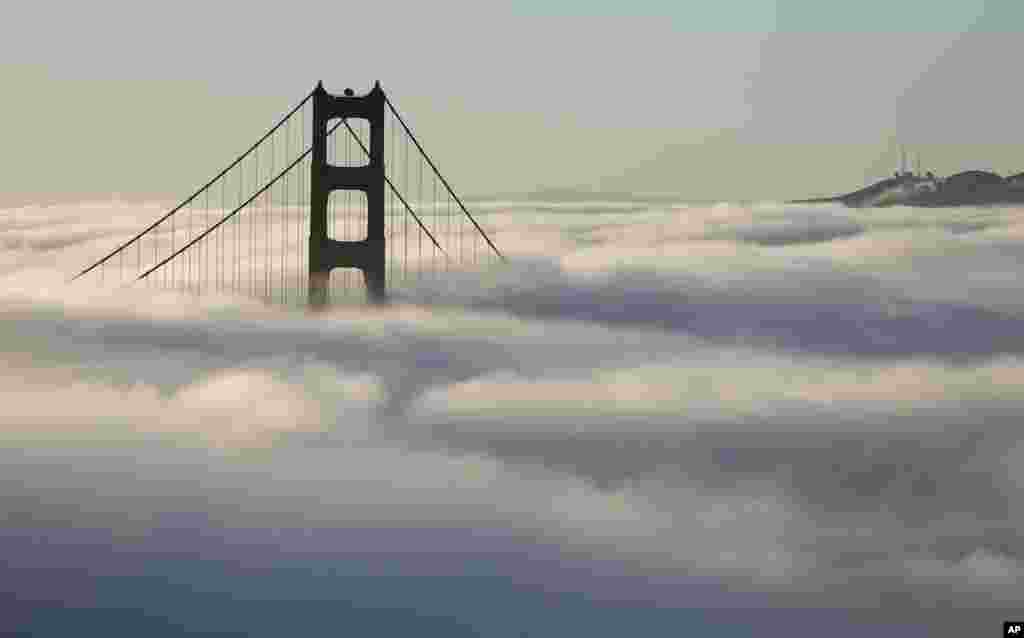 Fog blankets the south tower of the Golden Gate Bridge in San Francisco, California.