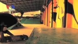 """Skateistan Cambodia"" Puts Phnom Penh Teens on Wheels (Cambodia news in Khmer)"