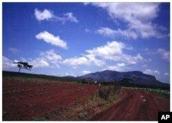 Farmland in Zimbabwe
