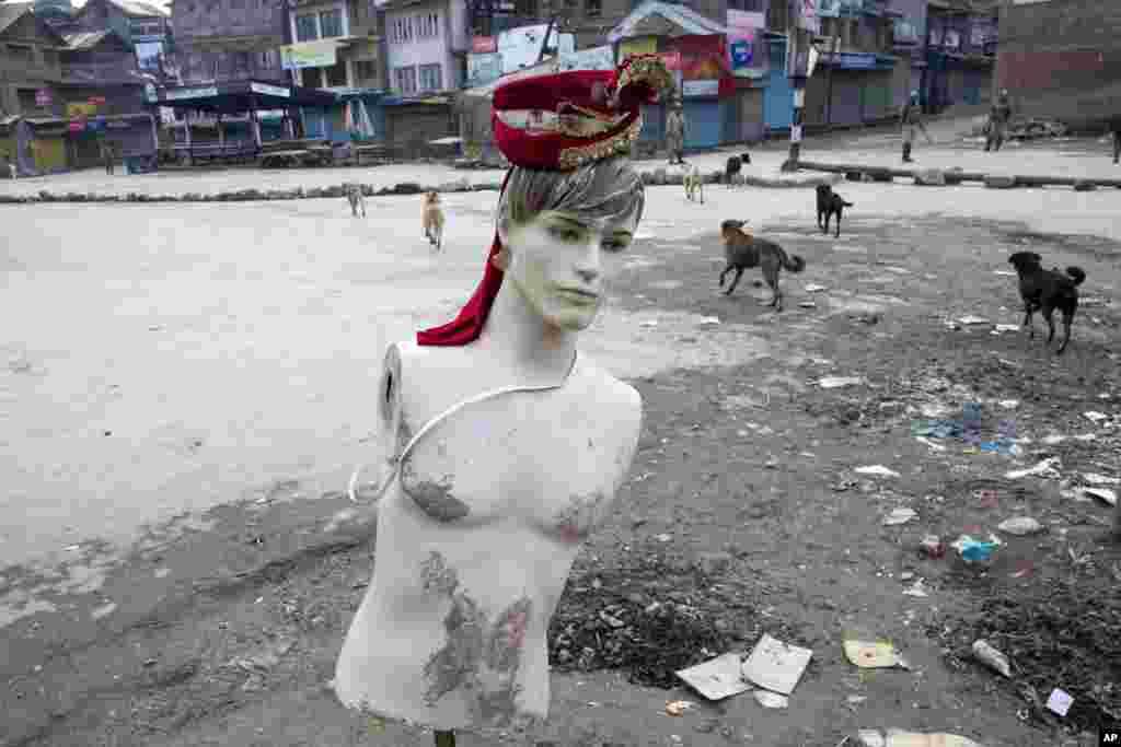 Anjing liar berkeliaran di jalanan yang kosong dengan sebuah manekin yang teronggok di pinggir jalan di Srinagar, Kashmir yang dikuasai oleh India. Pemerintah menerapkan jam malam di beberapa bagian Kashmir Himalaya sementara pemerintah menyisir kawasan yang diperebutkan untuk menghentikan protes anti-India sebelum kunjungan perdana menteri India.