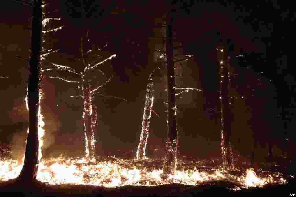خاکستر آتش سوزی از کنترل خارج شده بر روی زمین در تابويو دل مونت، در نزدیکی لئون در اسپانیا می درخشد. در هفته های اخیر آتش سوزی های متعددی در سراسر اسپانیا بدليل حرارت زياد، آغاز شده اند. (AFP)<