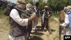 Các vùng bộ tộc Tây Bắc Pakistan được xem là cứ địa của al-Qaida và Taliban.