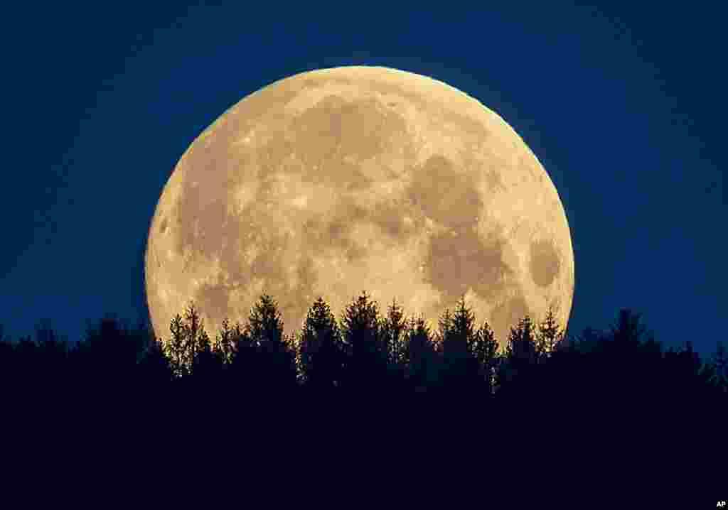 نمایی از ماه کامل. این عکس در شهر فرانکفورت آلمان گرفته شده است.