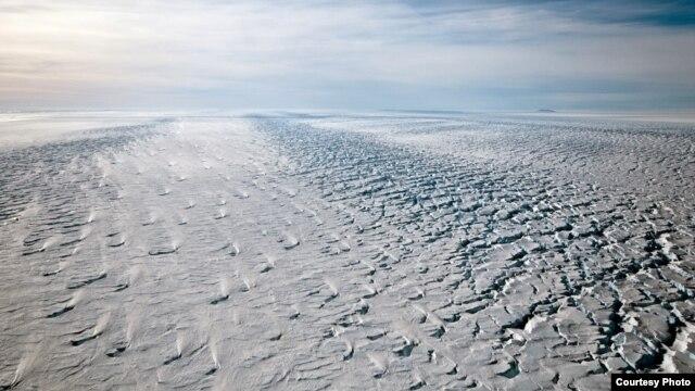 Criss-crossing crevasses near the grounding line of Pine Island Glacier, along Antarctica's Amundsen Sea Coast. (Photo courtesy Ian Joughin)