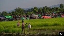 Seorang anak laki-laki Muslim Rohingya yang baru tiba di Bangladesh, Selasa (17/10).