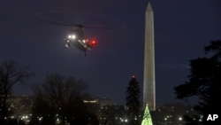 Obama National Christmas Tree