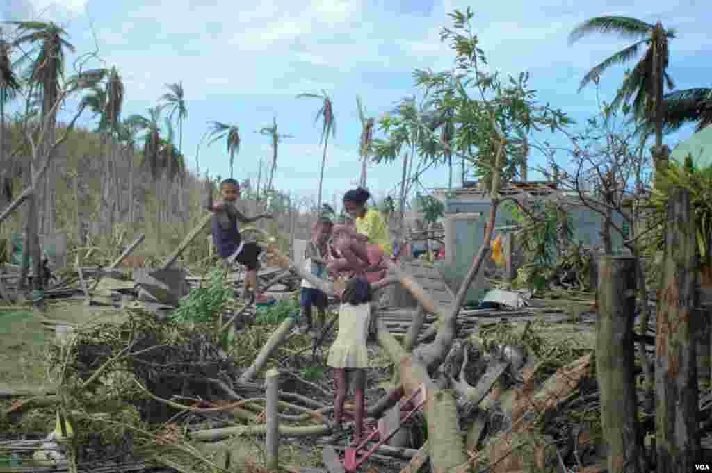 15일 필리핀 세부에서 태풍으로 쓰러진 나무 사이로 아이들이 놀고 있다.