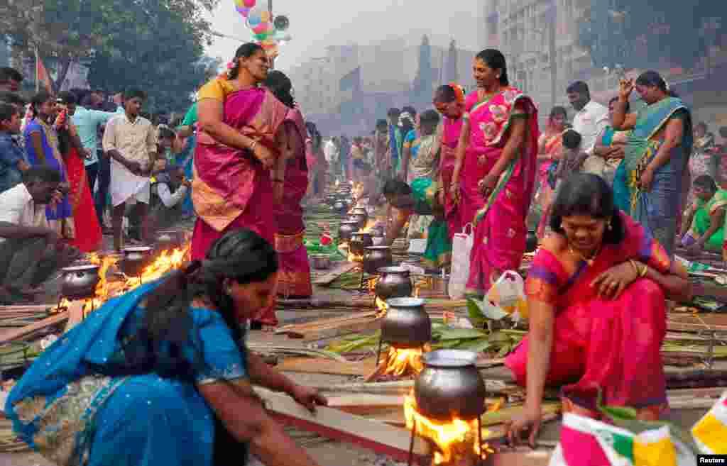 អ្នកគោរពសាសនាហិណ្ឌូរៀបចំបាយសម្លដើម្បីសែនដល់ព្រះក្នុងសាសនាហិណ្ឌូរបស់ពួកគេ នៅពេលពួកគេចូលរួមក្នុងការប្រារព្ធពិធី Pongal នាពេលព្រឹកនៅក្នុងក្រុង Mumbai ប្រទេសឥណ្ឌា កាលពីថ្ងៃទី១៤ ខែមករា ឆ្នាំ២០១៧។