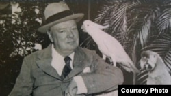 About a decade after Parrot Jungle opened, British Prime Minister Winston Churchill visited and met Pinky, the bicycling cockatoo. (Wikipedia Commons)