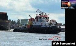 Anak ikan Pesut Mahakam berenang tidak jauh dari kapal pengangkut batu bara. 10 persen kematian pesut akibat tertabrak kapal. (Foto: Tangkapan Layar)