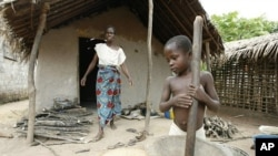 A boy from the ethnic Guere grinds rice near his mother at Fengolo, a village in western Ivory Coast (File Photo).