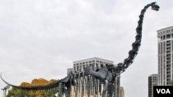 Model kerangka Brachiosaurus yang dipasang di depan museum sejarah nasional di kota Chicago.