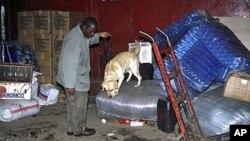 Mbwa maalumu wa polisi akinusa mizigo nje ya basi lililohusika na ajali ya mlipuko wa bomu mjini Nairobi, Dec 20,2010