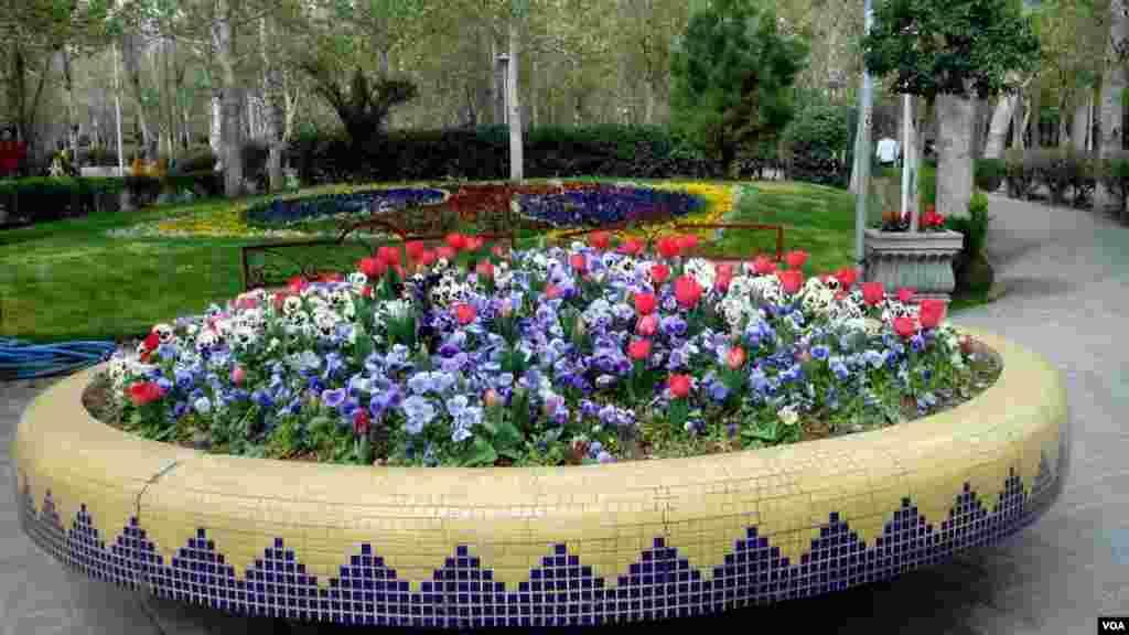 گل های پارک لاله تهران عکس: کوروش آقایی (ارسالی شما)