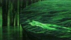 «Сірк дю Солей» - феномен циркового мистецтва