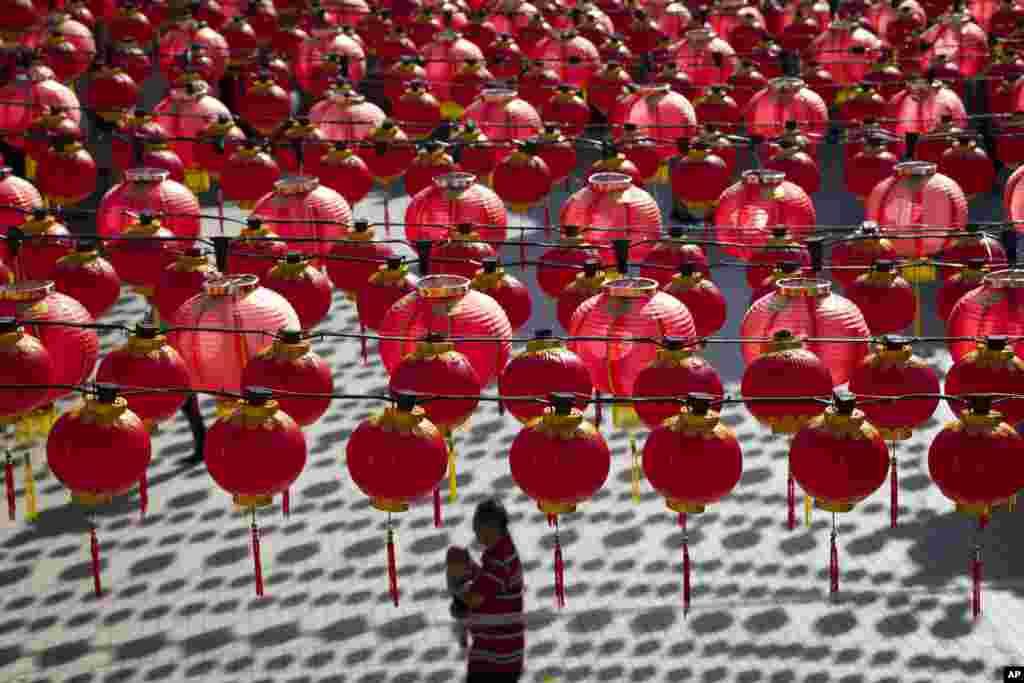 چینی کلینڈر کے لحاظ سے یہ سال ایئر آف دا روسٹر یعنی مرغ کے سال کے طور پر منایا جا رہا ہے۔