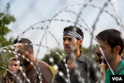 Confusion rampant among migrants who got to the Hungarian border from Serbia, only to find a four-meter-high fence blocking their way, Sept. 15, 2015. (A. Tanzeem/VOA)