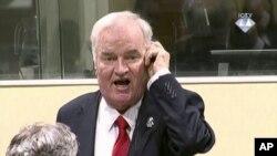 ប្រធានកងកម្លាំងយោធា Serb បូស្នីលោក Ratko Mladic ផ្ទុះកំហឹងនៅក្នុងសវនាការឧក្រិដ្ឋកម្មសង្រ្គាមយូហ្គោស្លាវីក្នុងទីក្រុងឡាអេ ប្រទេសហូឡង់កាលពីថ្ងៃទី២២ វិច្ឆិកា ២០១៧។