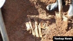 지난해 9월 일본인 민간단체가 평양시 사동구역 농가 밭에서 발굴한 일본인 유골을 매장하고 있다. (자료사진)