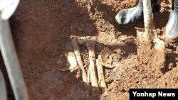 지난해 2012년 9월 일본인 민간단체가 평양시 사동구역 농가 밭에서 발굴한 일본인 유골을 매장하고 있다. (자료사진)