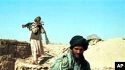 탈레반의 무장요원들