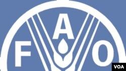 Organisasi Pertanian dan Pangan PBB mengadakan rapat khusus di Roma kemarin.
