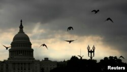 Birds fly past the U.S. Capitol as the sun rises in Washington, D.C., Sept. 9, 2013.