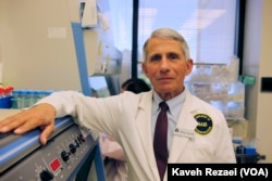 Dr. Anthony Fauci leads the U.S. National Institute of Allergy and Infectious Diseases.