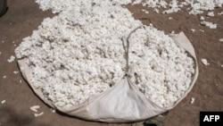 Du coton brut non transformé à Bakou, dans le district de Wewe, au Bénin, le 9 janvier 2018.