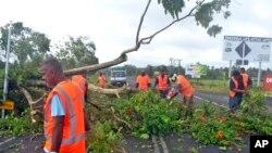 Công nhân dọn dẹp cây cối bị đổ sau trận bão tại Lami, Fiji, ngày 21/2/2016.