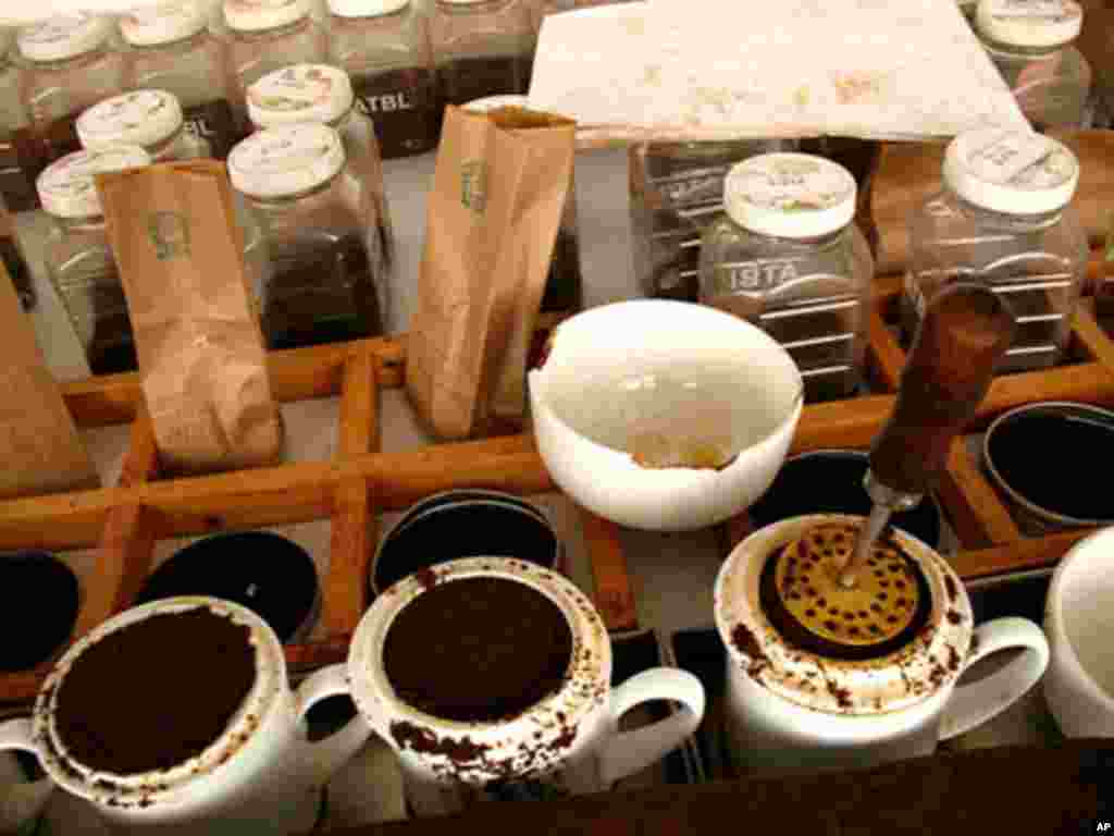Teas lined up waiting to be tasted at Africa Tea Brokers, February 15, 2012