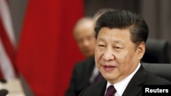 Xi Jinping, Presidente chinês