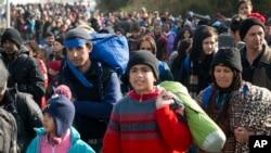 Những di dân đi về phía nước Áo từ Sentilj, Slovenia, ngày 30/10/2015.