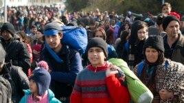 Sllovenia , barriera për emigrantët në kufi