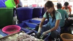 Thai Migrant Worker Process Flawed, Awareness Low