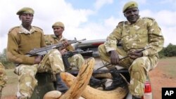 Кенийские военные с захваченными у браконьеров бивнями слона.