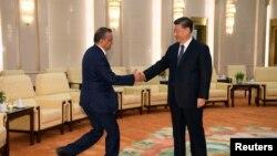 中国国家主席习近平在北京人大会堂会晤到访的世界卫生组织总干事谭德塞。(2020年1月28日)