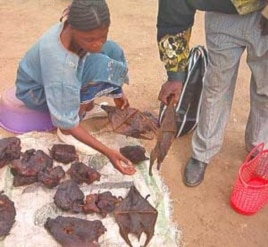 FILE - A vendor sells bats and other bushmeat in market outside Yaounde, Cameroon.