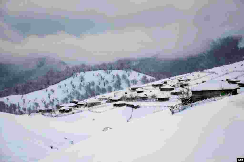 منظره ای از بارش برف در تالش در شمال ایران