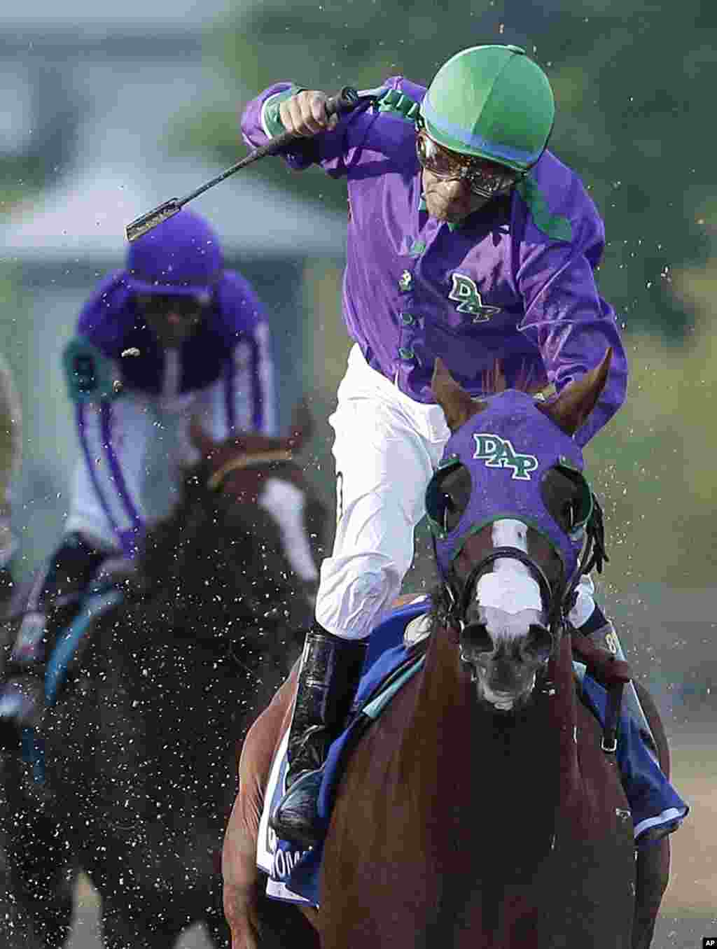 Jockey Victor Espinoza celebrates after California Chrome won the 139th Preakness Stakes horse race at Pimlico Race Course, Maryland, May 17, 2014.