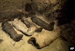 Mummies lie in a recently discovered burial chamber in the desert province of Minya, south of Cairo, Egypt, Saturday, Feb. 2, 2019.