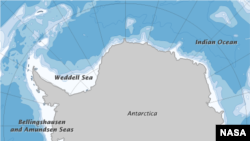 Antarctic Peninsula Shows Green Spots