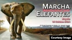 Cartaz da Marcha pelos Elefantes e Rinocerontes em Moçambique