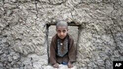 په افغانستان کې د روان کال ترپایه د څلورسوه زروپورې د کورنیو بې ځایه شوو اټکل کړی دی