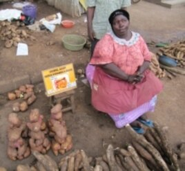 A market vendor in Uganda promotes vitamin A-rich orange sweet potatoes.