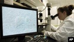 Η πρώτη θεραπεία με εμβρυικά πρωτογενή κύτταρα