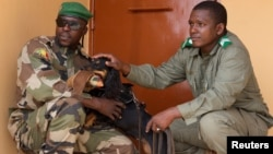 A dog trained to sniff out ivory is seen with a member of Mali's anti-poaching brigade during a training in Bamako, Mali, July 8, 2017.