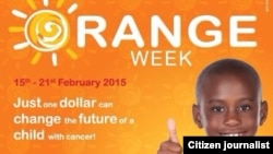 The campaign calls for people to dress in orange throughout the week and support the organization with at least a $1 donation.